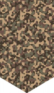 Background Camo 1